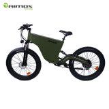 Le gros logo de propriétaire de peinture de pneu a supporté le vélo électrique