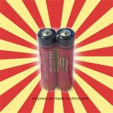 Grüne Größe des Batterien Winpow Kohlenstoff-Zink-1.5V AAA