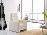 Мебель софы Италии отдыха кожаный (770)