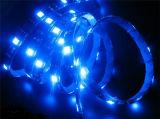Striscia programmabile nera del PWB WS2812B DC5V LED