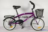 da '' bicicleta praia 20