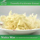 Polysaccharides naturels de l'extrait 40% de Fuciformis de Tremella de 100%