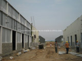 Steel chiaro Structue di Steel Sheet per Production Workshop