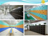 Het Kabinet van de Kast van de school van ABS het Plastiek dat van de Techniek wordt gemaakt