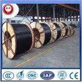 Cu/XLPE/PVC/Swa/PVC 0.6/1kv Electric Wire en Cbale