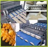 Nenhuma linha de produção automática cheia do pão do Croissant da operação do homem da necessidade