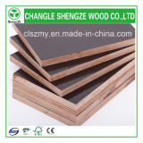 Film Faced Plywood를 위한 높은 Quality Best Price