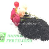 40%--Fertilizzante dell'acido umico di 60%