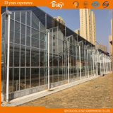 Bom Appearance Glass Multi-Span Greenhouse para Scientific Experiment