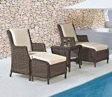 Garten-Flechtweide/Rattan-Möbel-gesetzter Tisch und Stuhl (LN-2121)