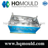 Inyección de Plástico Auto Parts Mould / Car Mould (HQ-A3)