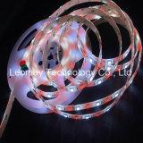 lumière de bande de 5050SMD RGBW 24VDC DEL avec le ruban adhésif de 3M