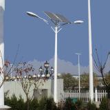 Estrada solar Octagonal pólo claro