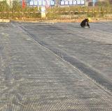 Plastic Tweeassige Geogrid voor Ballastbed