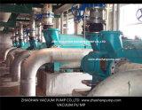 Komplettes Vakuumpumpen-System für Zellstoff- und Papierindustrie