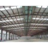 Fabbrica chiara favorevole all'ambiente della struttura d'acciaio (DG1-028)