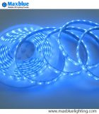 3528 60LEDs/M Blue Color IP68 Waterproof LED Strip