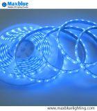 il colore blu IP68 di 3528SMD 60LEDs/M impermeabilizza la striscia del LED