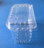 ブドウのFDAのためのDiaposableの食品等級のプラスチックフルーツの包装の容器は提供する