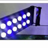 indicatori luminosi eccellenti dell'acquario di alto potere LED di luminosità 50W di 117cm per il serbatoio della scogliera dei pesci