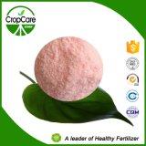 Fabricant hydrosoluble d'engrais de l'engrais de NPK (16-16-16+TE)