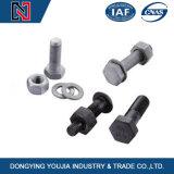 China-Befestigungsteil-Hersteller-Qualitäts-hochfeste Schraube