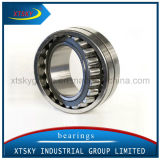 Xtsky Double Row Self-Aligning Roller Bearing (22205)