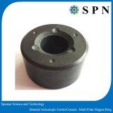 常置亜鉄酸塩の焼結するMultipole磁石のリング