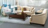 Nuovo sofà del tessuto di arrivo, mobilia domestica, sofà di disegno semplice (M615)