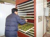 Multi máquina do secador do forno da função para a fruta e verdura