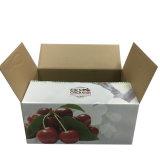 Boîte de empaquetage de empaquetage à fruit de cerise de double mur durable