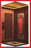 저가에 있는 고품질 홈 상승 또는 엘리베이터