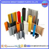 직업적인 제조 고품질 플라스틱은 단면도 내밀었다