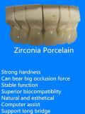 Zirkon cerâmico cheio com bom Biocompatibility