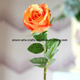 Bei fiori decorativi di seta falsi dei fiori artificiali della Rosa del gambo lungo per la cerimonia nuziale/decorazione domestica