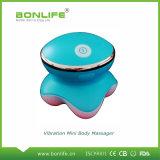 USB вибрируя миниый электрический Massager