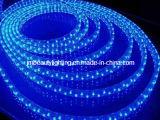 Indicatore luminoso di striscia chiaro dell'UL LED LED di LED110V/220V 5050SMD