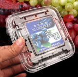 125g Blueberry Pet Transparent Blister Box