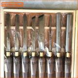 Деревянная установленная долбежная стамеска и комплект инструментов Woodworking поворачивая