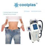 Vacío de congelación gordo de Coolplas Cryotherapy del equipo del salón que adelgaza la máquina