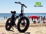 Bicicleta elétrica de dobramento da praia 250W do pneu gordo