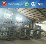 Type produit neuf des machines H de ferme de matériel de ferme de cailles