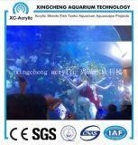 Grande projeto acrílico redondo transparente do restaurante do aquário