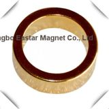 Плакировка золота весь магнит неодимия формы