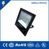 세륨 RoHS 10W - 100W IP66 LED 플러드 빛