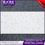 Mattonelle di ceramica della parete delle mattonelle della porcellana incluse 300*600 di Foshan