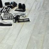 Impermeabilizzare la pavimentazione del vinile di Spc Lvt di scatto