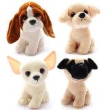 おもちゃのプラシ天によって斑点を付けられる犬