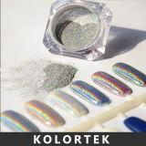Polvere del chiodo dell'ologramma, polvere olografica del pigmento per il polacco di chiodo