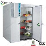 Sitio de enfriamiento ahorro de energía de las verduras frescas